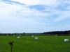 0813_11_fujimi